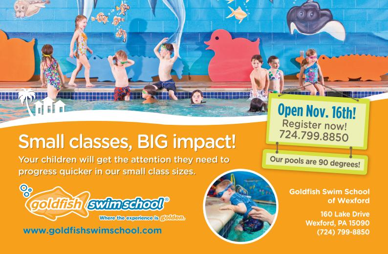 GoldfishSwimSchool