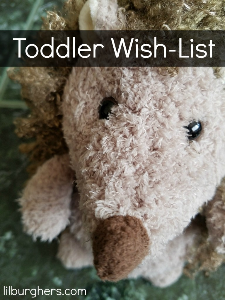 Toddler Wish-list